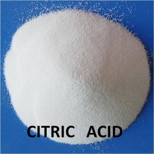 Citric Acid 99.5% Above